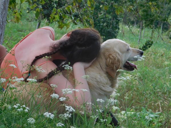 garden of adaptogens for dogs with golden retriever and owner