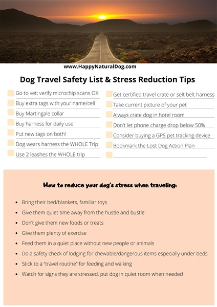 traveling with dogs safety list