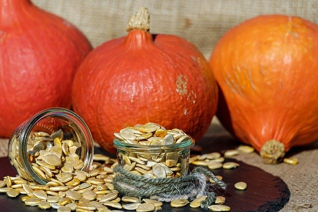 pumpkin seeds which can be excellent dewormers for dogs