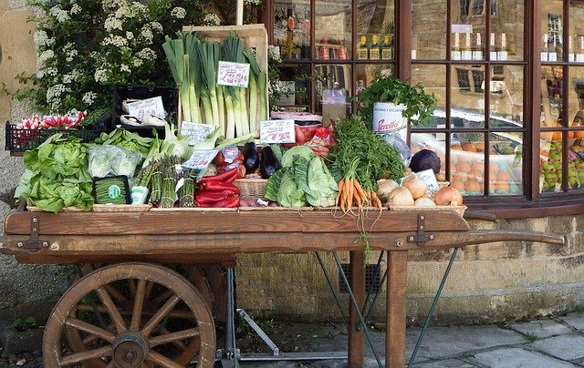 cart full of vegetables and herbs to use for natural dewormers for dogs